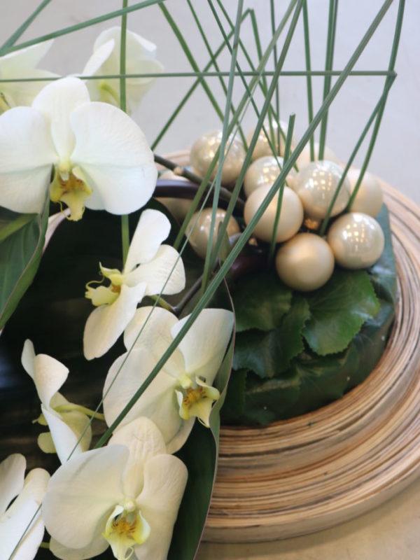bloem van de maand orchidee 086